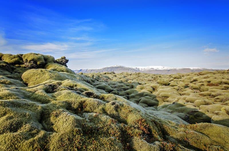 Island lavafält fotografering för bildbyråer