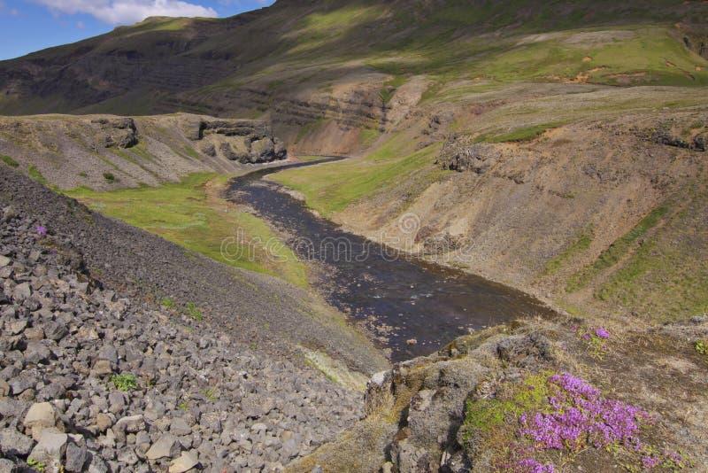 Island: Liten flod royaltyfria bilder