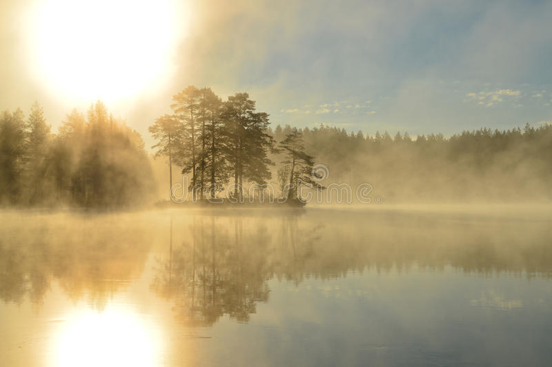 Island in the mist in Sweden royalty free stock images