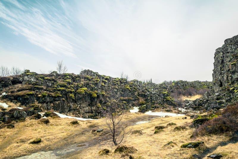 Island natur i ett fantastiskt landskap royaltyfri fotografi