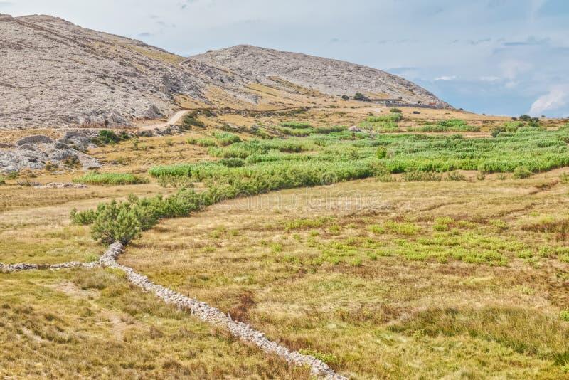 Island Pag landscape, Croatia royalty free stock photography