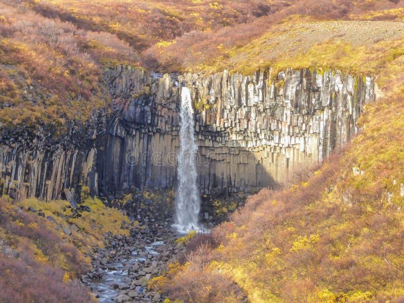 Island - storartad vattenfall arkivfoto