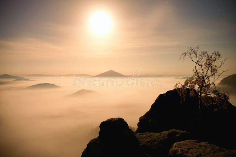 Island with tree in misty ocean. Full moon night in beautiful mountain. Sandstone peaks increased from heavy creamy fog. royalty free stock photo