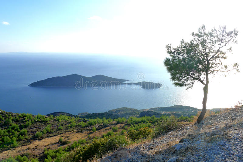 The island and the tree in Samos Greece. A view of the archipelago islands of samos Greece a aegean ancient and archaeological aristarchus as beautiful stock photos