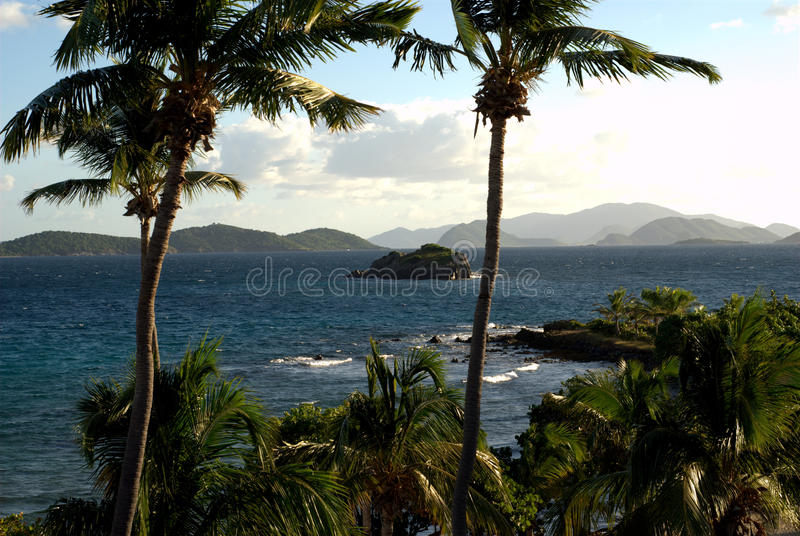 Island Views from St. Thomas, US Virgin Islands. View of the outlying islands from the US Virgin Island of St. Thomas, looking through palm trees and Caribbean stock photo