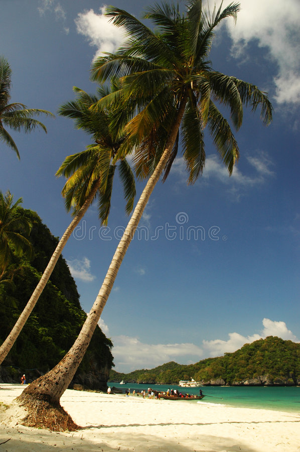 Island9 royalty free stock photo