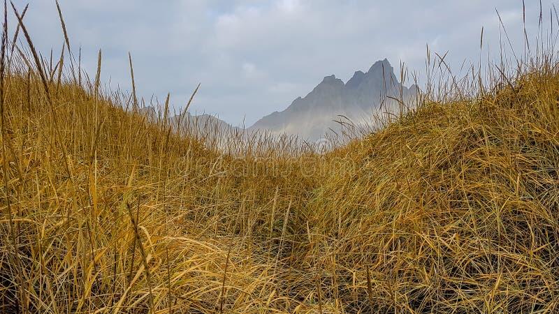 Islandia - monta?as que ocultan behing una duna de arena imágenes de archivo libres de regalías