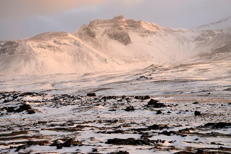 Islands högländer i vinter arkivfoton