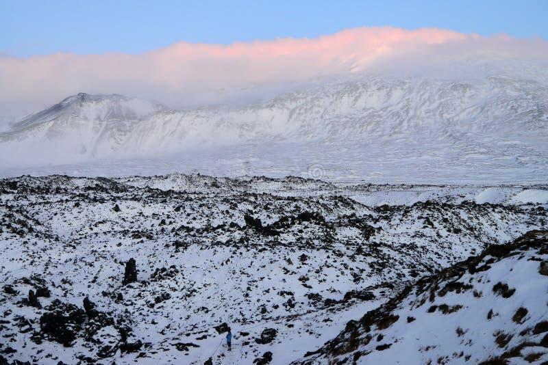Islands högländer i vinter royaltyfria foton