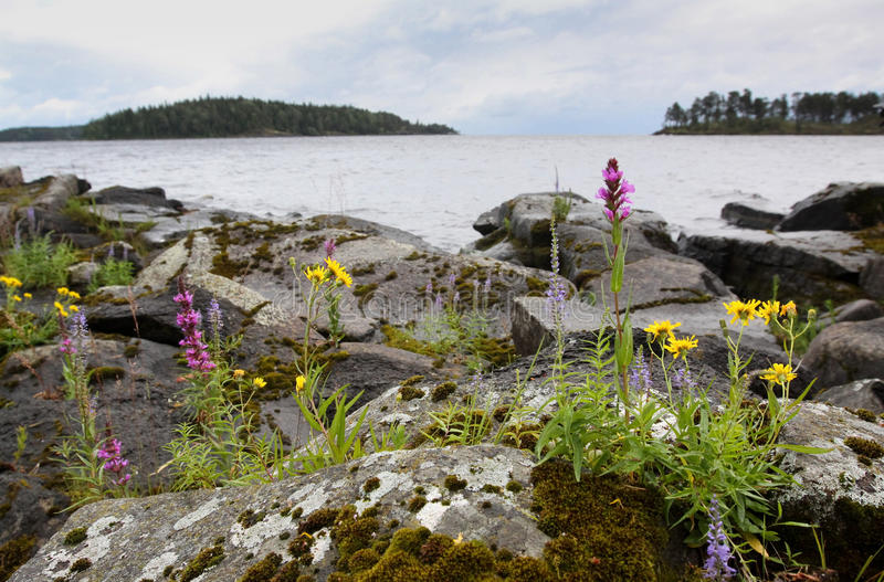 The Islands of the Valaam archipelago stock photo