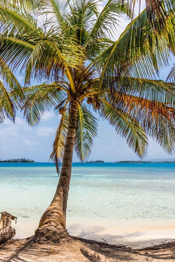Islas de San Blas en Panamá foto de archivo libre de regalías