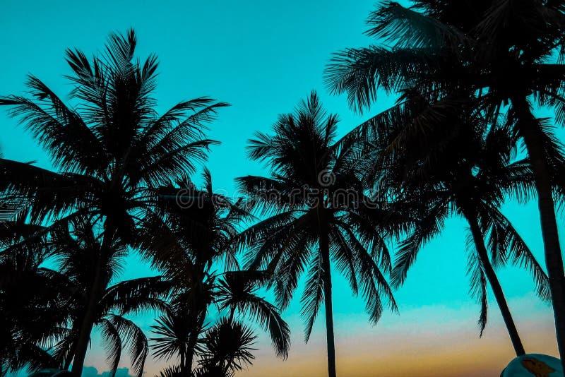 Islas Tailandia de Phi Phi imágenes de archivo libres de regalías