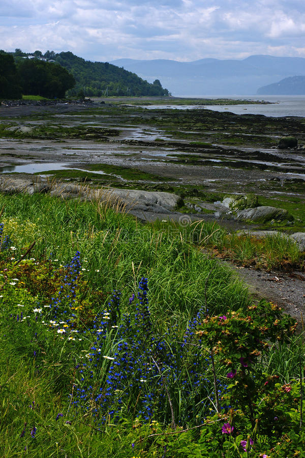 Download Isle-aux-Coudres, Quebec stock photo. Image of seaway - 10261132