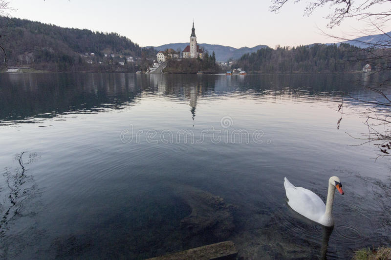 The isle of Bled royalty free stock image