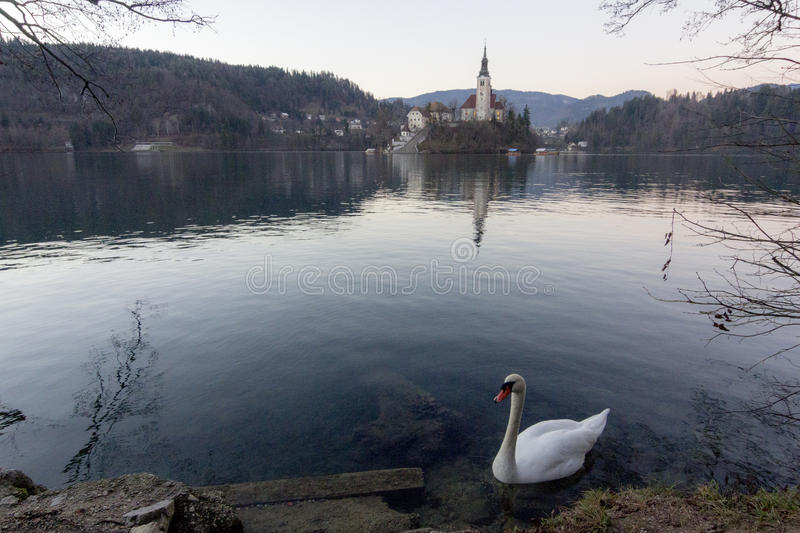 The isle of Bled stock photo
