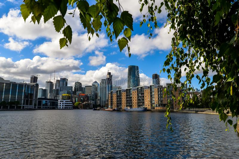 Isle of dogs - London. London, UK - 6/15/19 - A sunny at dog on the Isle of Dogs near Canary Wharf - London stock images