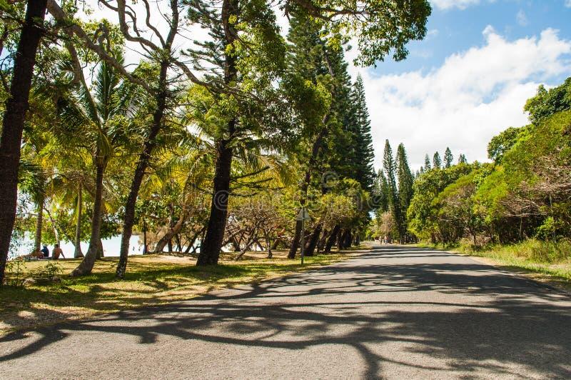 Isle of Pines royalty free stock photos