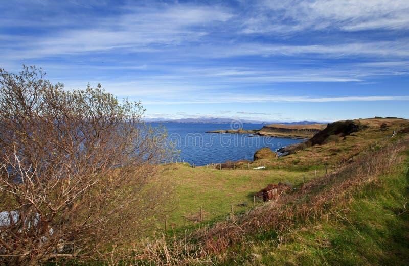 Isle of Skye - spring landscape royalty free stock image