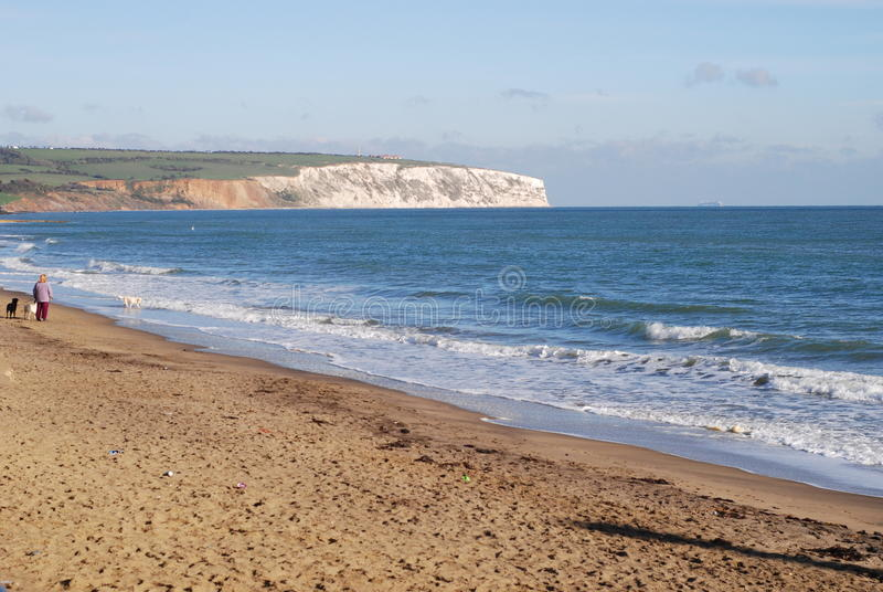 Isle of Wight. Culver cliff on the isle of Weight royalty free stock photo