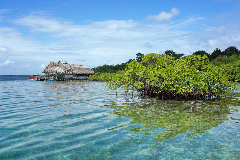 Islet of mangrove tree with tropical restaurant stock photos