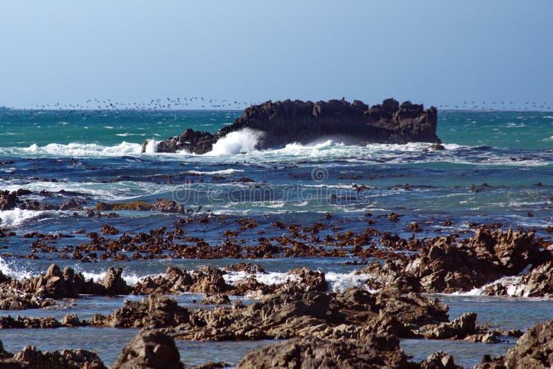 Islet off a rocky coast royalty free stock photos
