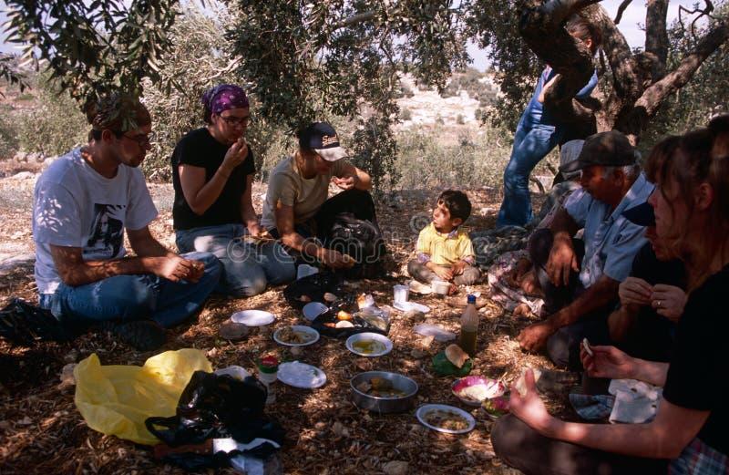 ISM vrijwilligers die een onderbreking in een olijfbosje nemen. stock afbeelding