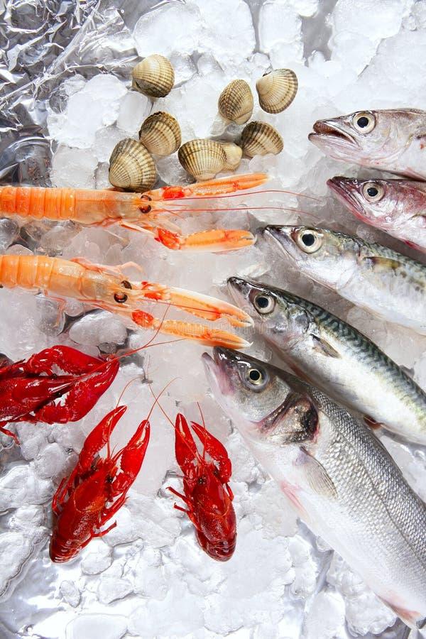 ismarknad över skaldjur royaltyfri bild