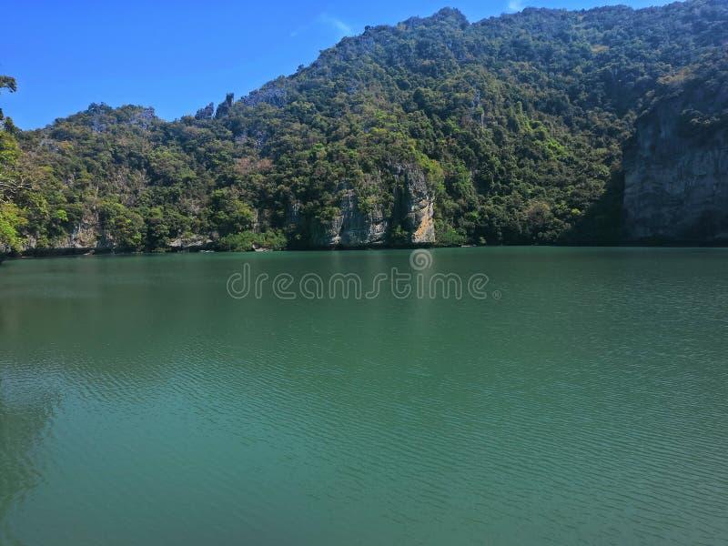 Isola blu degli alberi del paesaggio della natura dell'acqua salata dell'acqua della Tailandia della laguna fotografie stock libere da diritti