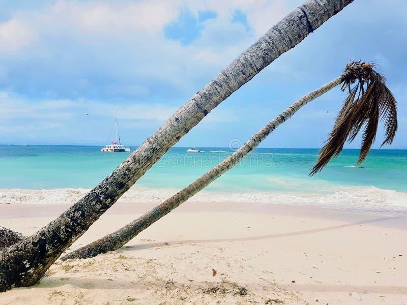 Isola Cayo Levantado di Bacardi fotografie stock libere da diritti