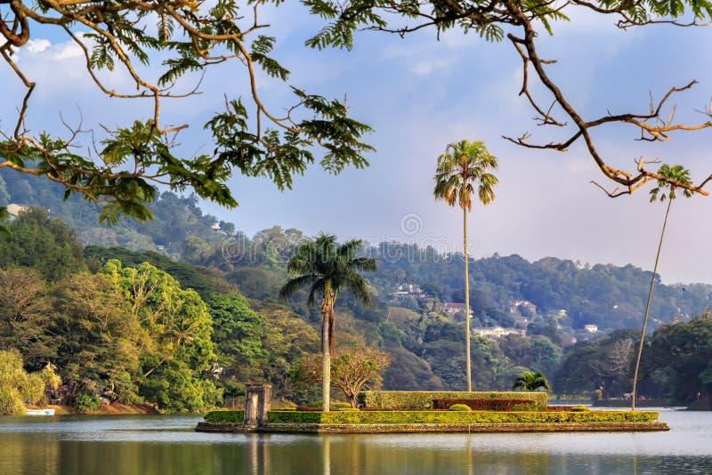 Isola con tre palme nel centro del lago della città immagini stock