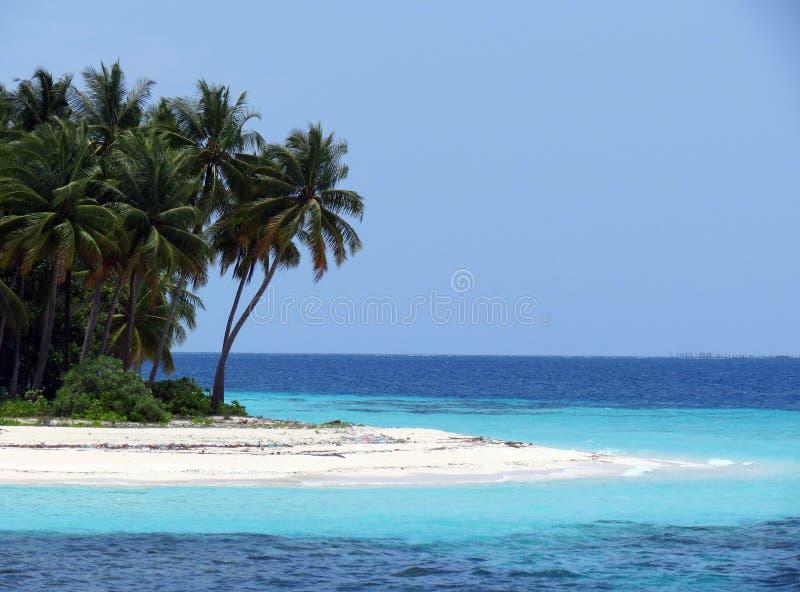 Isola dei Maldives fotografie stock