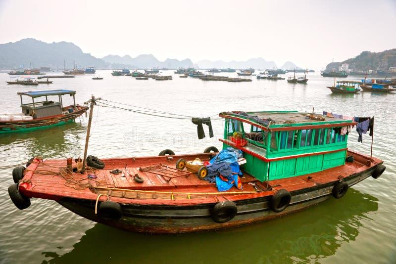 Isola del Ba del gatto, baia di Halong, Vietnam. fotografia stock
