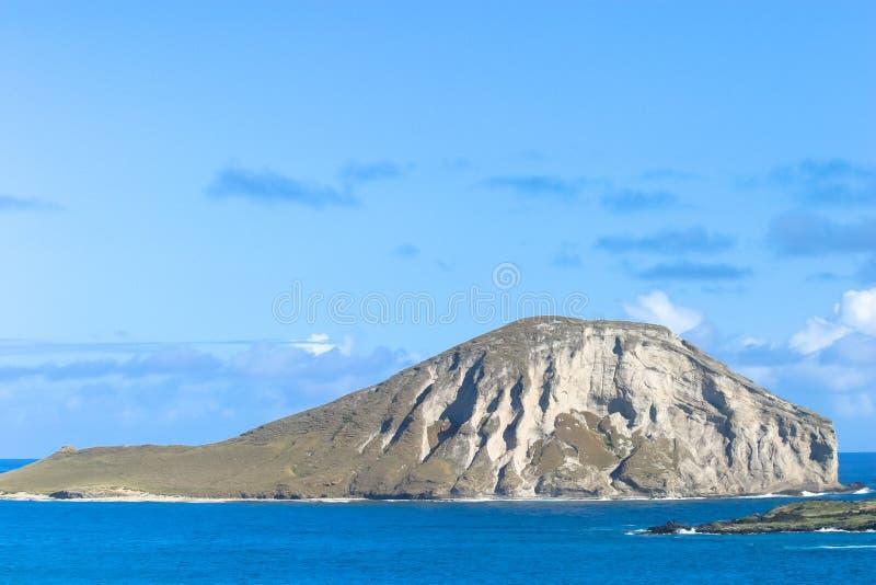 Isola del coniglio immagine stock libera da diritti