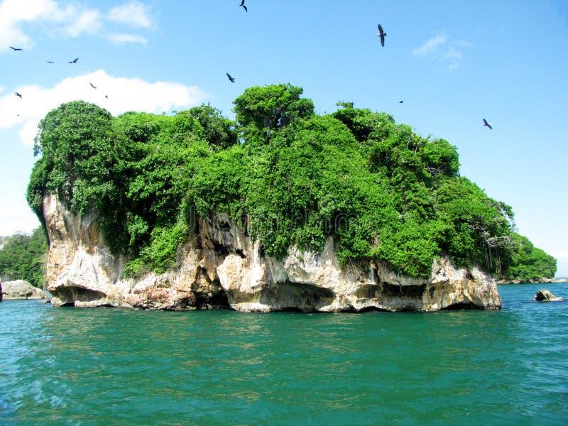 Isola del parco nazionale di Los Haitises nella Repubblica dominicana fotografia stock libera da diritti