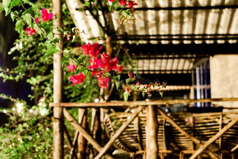 Isola della Cambogia notte il bungalow con una grande veranda fotografia stock