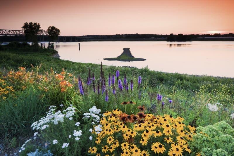 Isola della freccia sul Mississippi fotografie stock