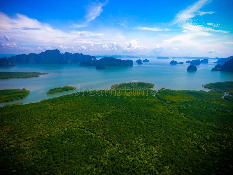 Isola della mangrovia fotografia stock