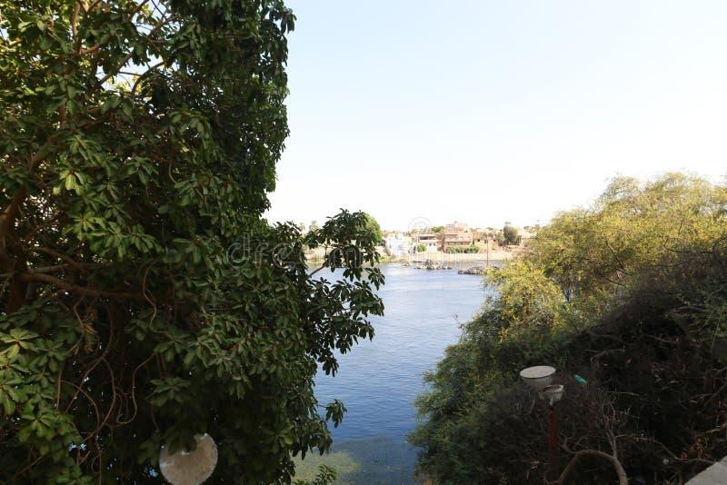Isola delle piante a Assuan Egitto fotografia stock