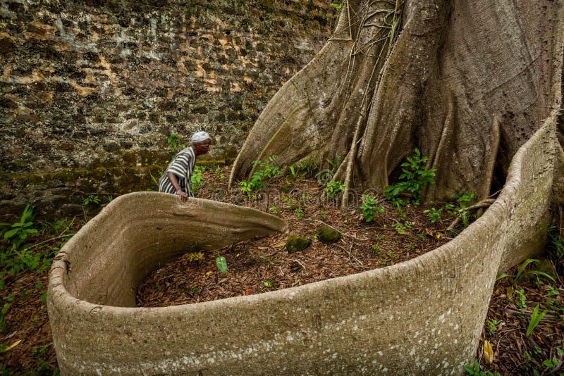 Isola di Bunce, Sierra Leone, Africa occidentale - commercio britannico dello schiavo immagini stock libere da diritti