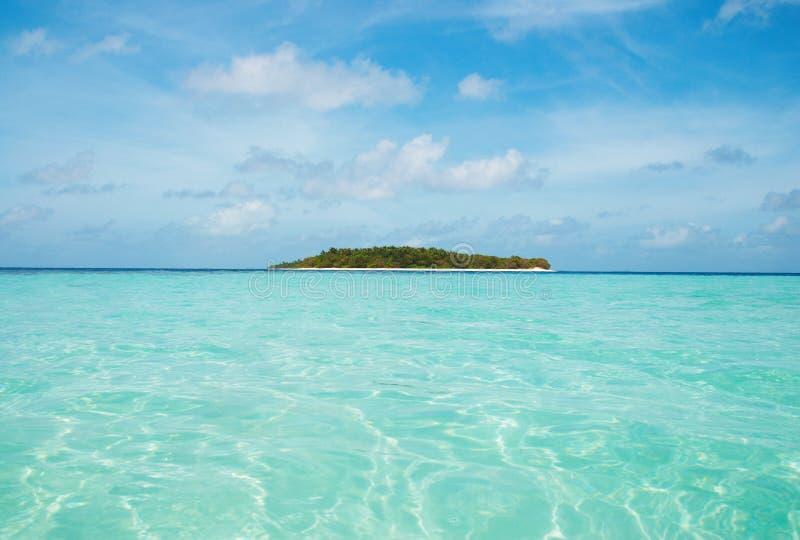 Isola di deserto immagine stock libera da diritti