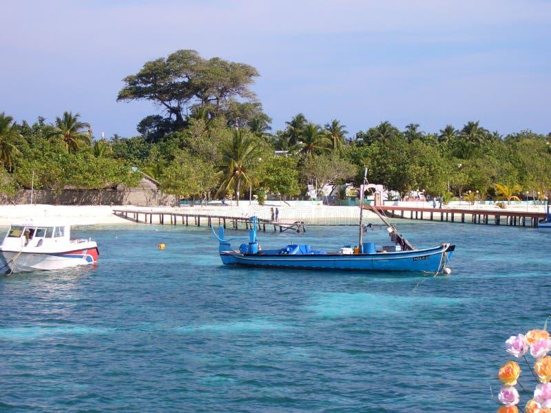 Isola di Dhangethi - Maldive fotografia stock
