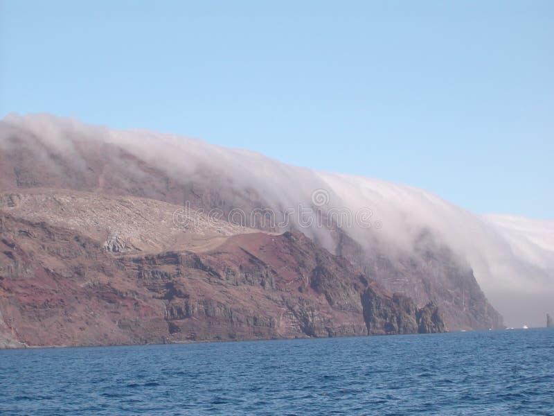 Isola di Guadalupe fotografie stock libere da diritti