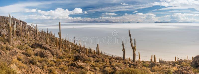 Isola di Incahuasi a Salar de Uyuni, Bolivia fotografia stock libera da diritti
