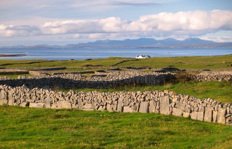 Isola di Inishmore, Irlanda fotografia stock