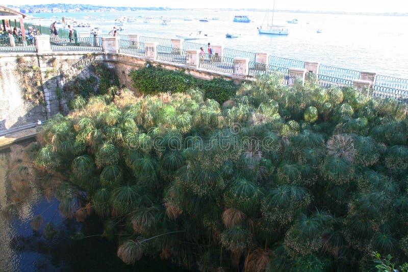 Isola di Ortigia immagini stock