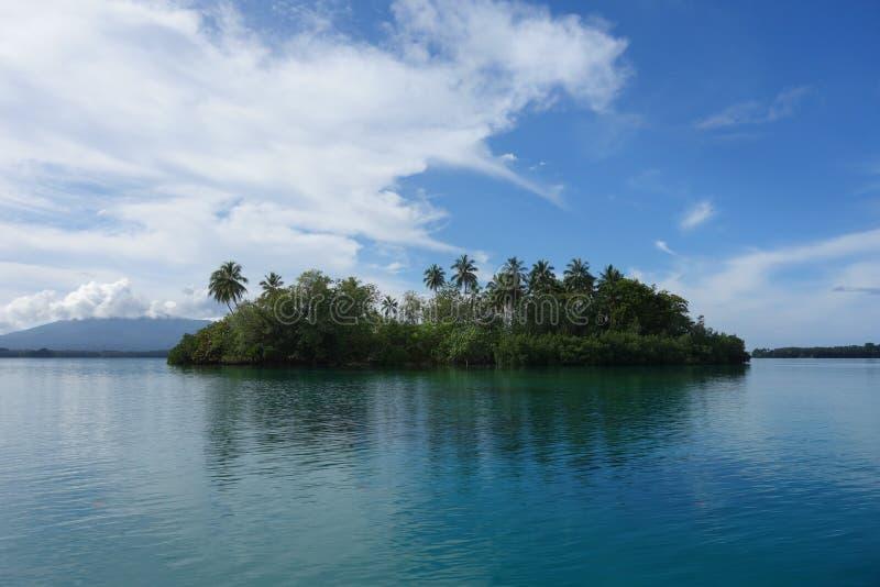 Isola di palma tropicale della sabbia bianca immagine stock