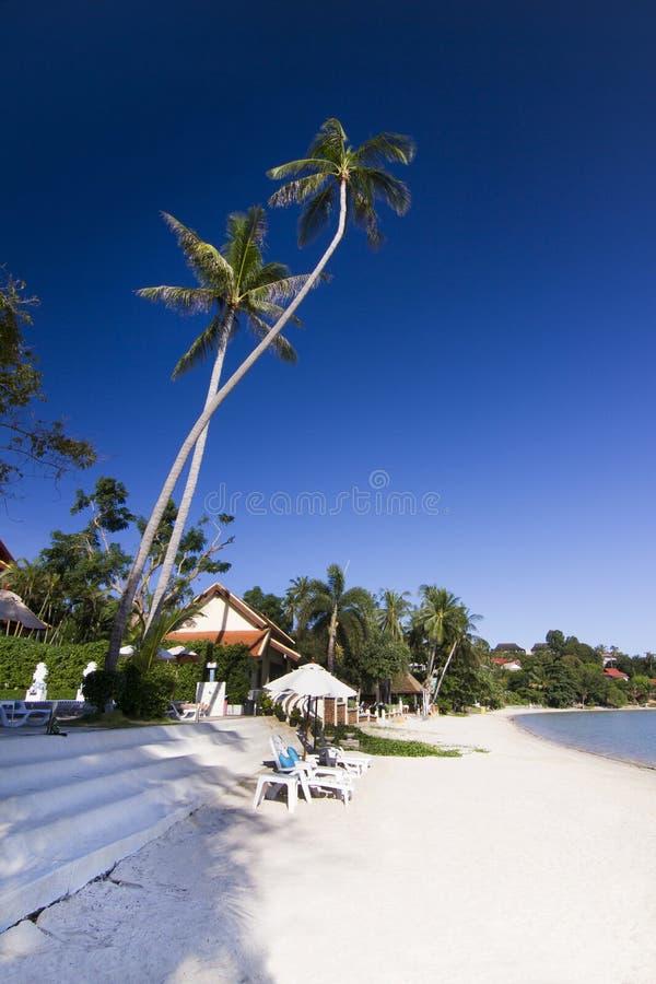 Isola di paradiso La Tailandia fotografia stock libera da diritti