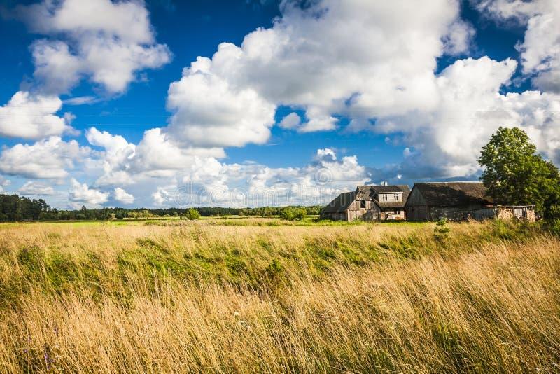 Isola di Saaremaa, Estonia fotografie stock libere da diritti
