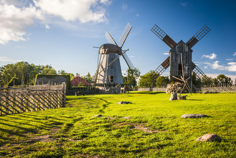 Isola di Saaremaa, Estonia immagini stock