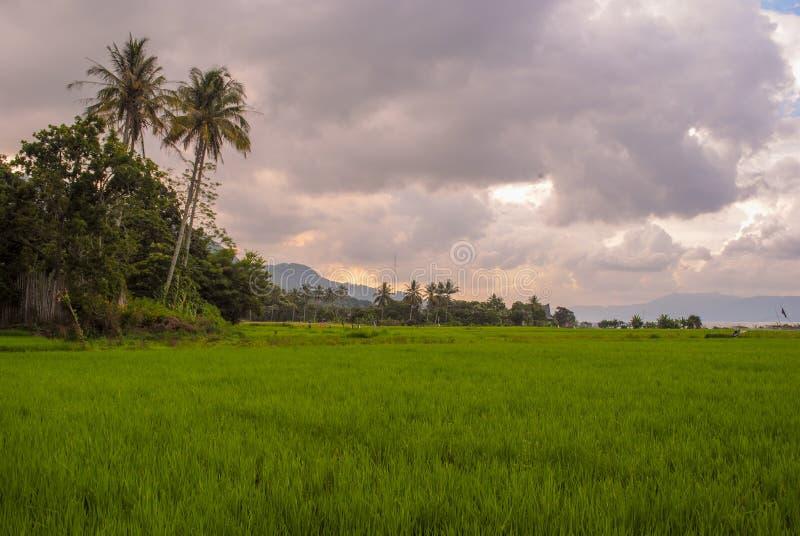 Isola di Samosir fotografie stock